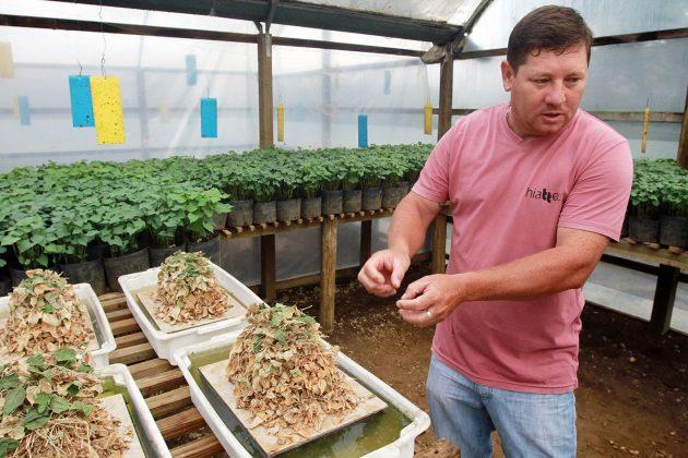 O técnico agrícola Luiz Carlos Blaka