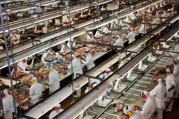 exportação-carne-bovina
