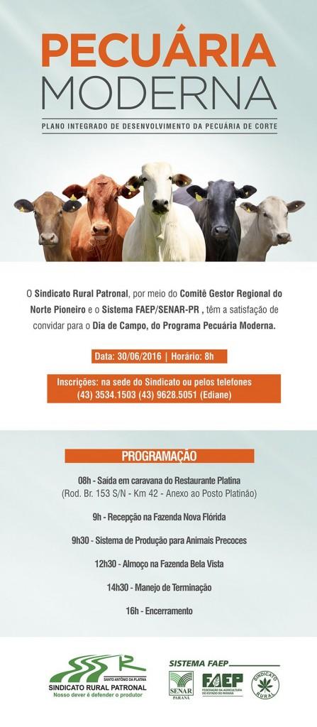 Convite Dia de Campo (2)